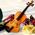 How to play the violin – to be master in violin with red desert violin