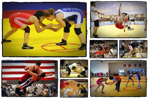 wrestling training review