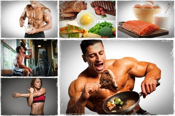 eat to gain muscle review