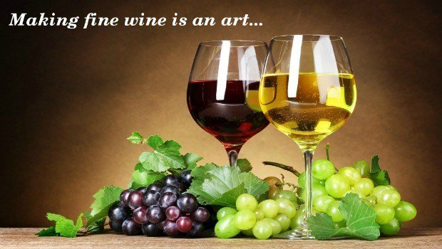 complete illustrated guide to homemade wine