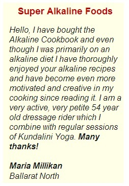 alkaline cook book