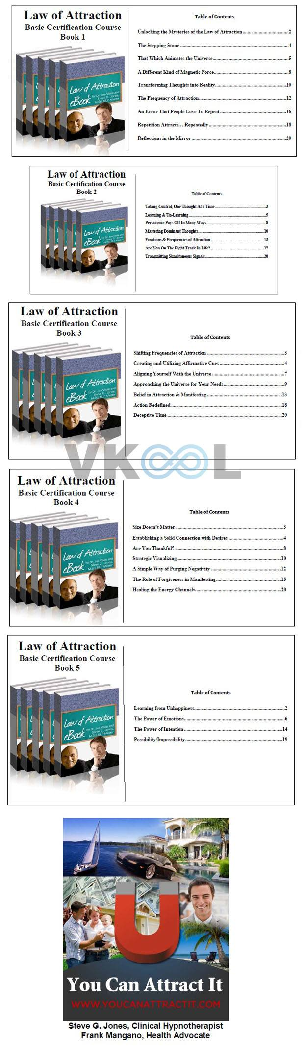 law of attraction review book