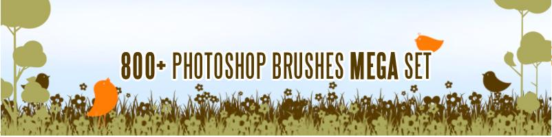 photoshop tools tutorial pdf photoshop brushes