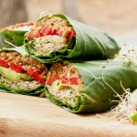 "Paleo lunch recipes – does ""paleo power lunch"" help people get healthy life?"