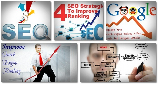 how to improve search engine ranking and wordpress seo domination