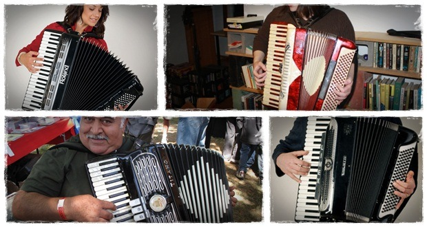 how to play an accordion at home accordion course for beginners