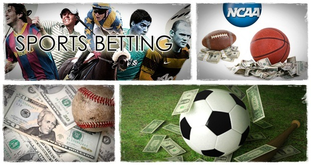 sports betting system and expert picks accuscore sports cash system