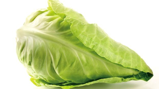 home remedies for vitiligo - cabbage