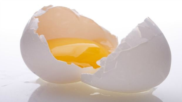 raw eggs download