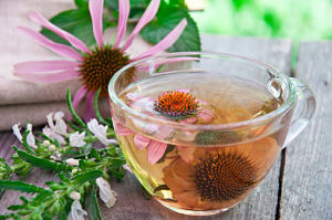 remedies for cold sores with drink echinacea tea