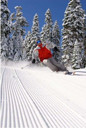 skiing tips for beginners pdf