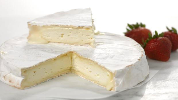 soft cheeses download
