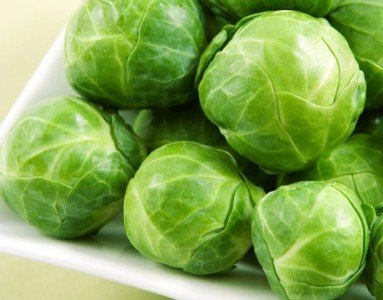 healthy foods for dogs with brussels sprouts