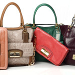 Amazing and useful tips for women to choose the right purses and handbags for a beautiful outlook