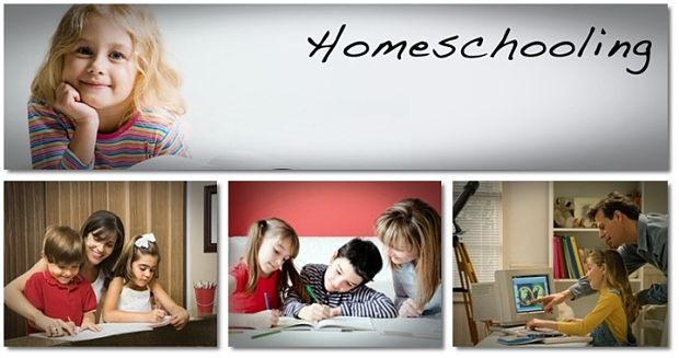 pros and cons of homeschooling and family education vkool pros and cons of homeschooling article