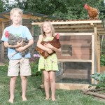 Building a chicken coop book review – a guide to build an attractive and affordable chicken coop