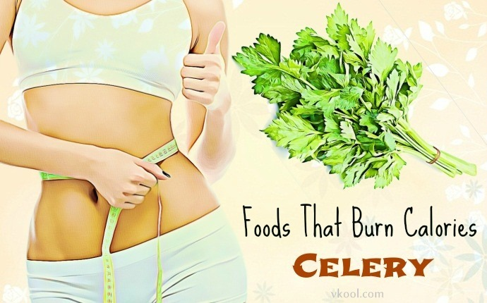 foods that burn calories - celery