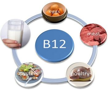 nutrition for older adults is vitamin B12