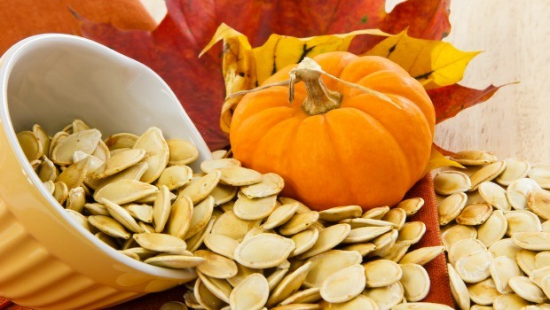 pumpkin seeds download