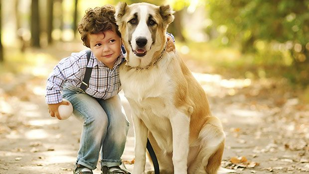 Reasons to own a pet for children