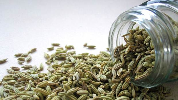 how to treat heartburn - fennel seeds