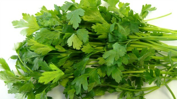 parsley leaf review