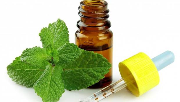 how to treat heartburn - peppermint