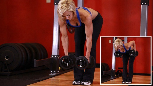 bent over two dumbbell row with palms in download