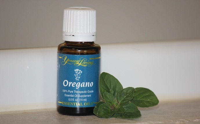 how to stop ingrown toenails - oregano essential oil