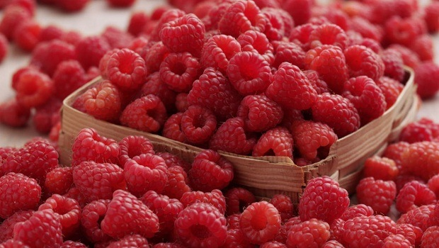 raspberries review