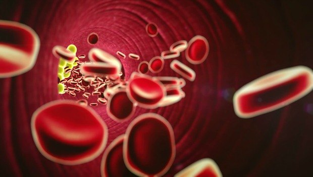 strengthen blood vessel integrity download