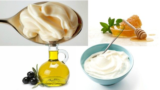 homemade mayo yogurt honey olive oil hair conditioner download