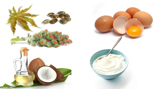 homemade yogurt, castor oil, egg, coconut oil hair conditioner download