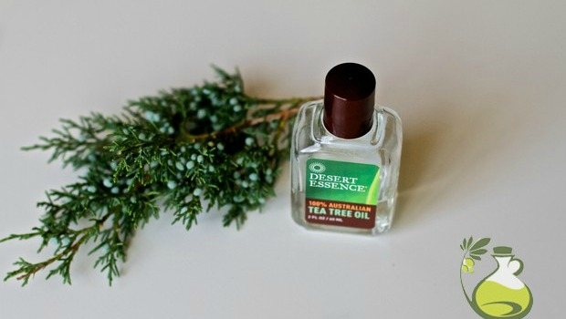 how to use tea tree oil as an antiseptic download