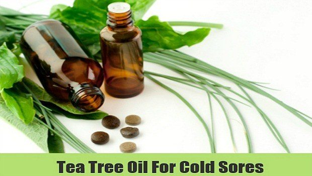 use tea tree oil for colds, cough bronchitis and congestion download