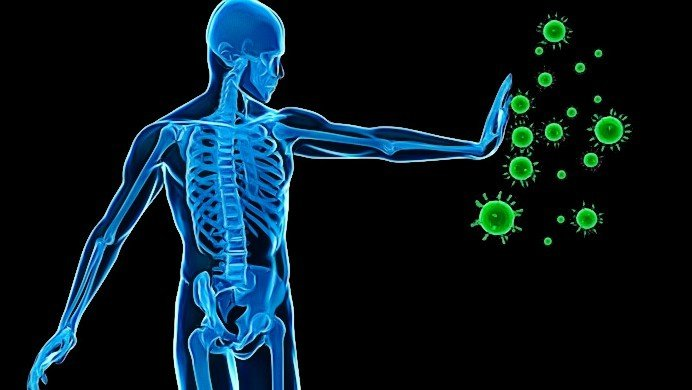 antioxidants and free radicals in human