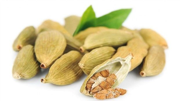 cook with cardamom seeds download