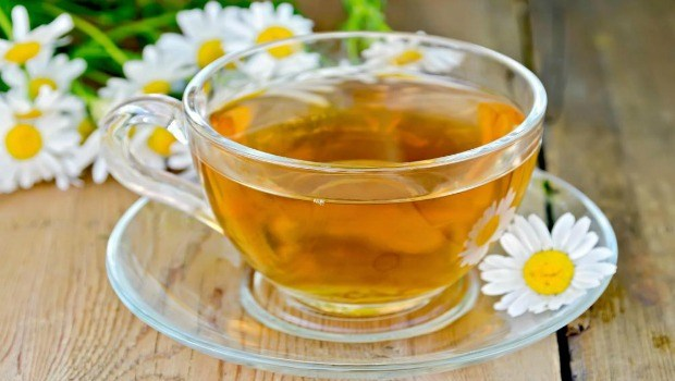 drinking a cup of chamomile tea download