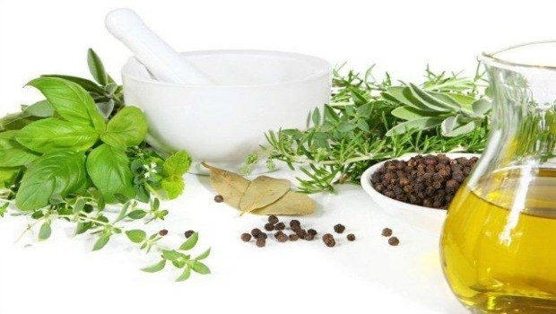shampoo your hair regularly with herbal leaves download
