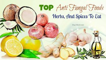 dnti fungal foods and herbs