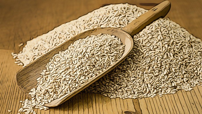 benefits of sesame seeds for everyone