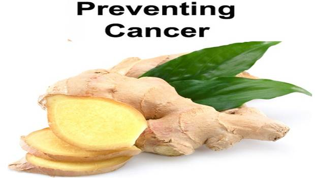 benefits of fresh ginger
