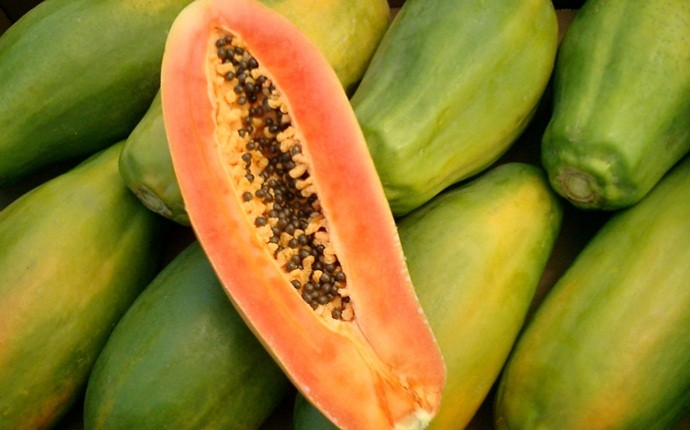 how to get rid of mustache - papaya and turmeric