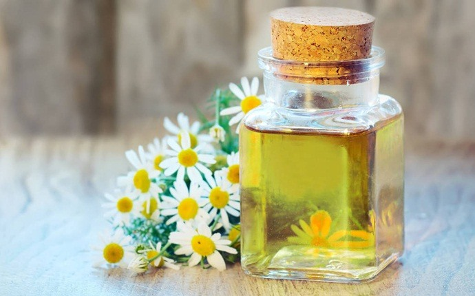 essential oils for oily skin - chamomile essential oil