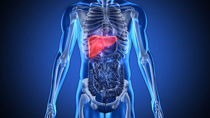 home remedies for fatty liver