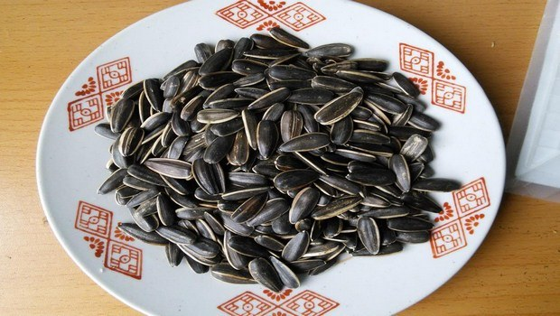 home remedies for low blood sugar-sunflower seeds