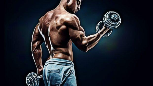 how to build arm muscle fast