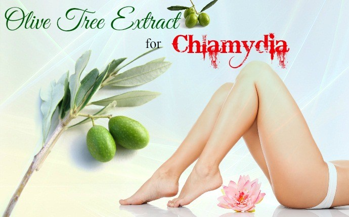 how to treat chlamydia - olive tree extract
