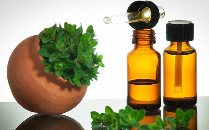 home remedies for skin fungus - oregano oil for skin fungus