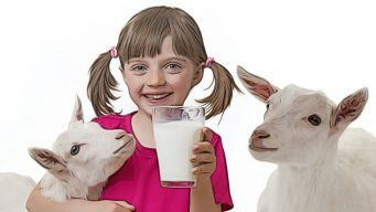 raw goat milk benefits & some cautions